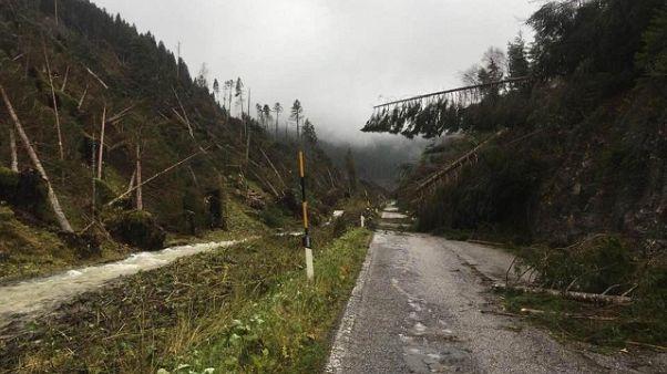 Pioggia in Trentino, torna l'allerta