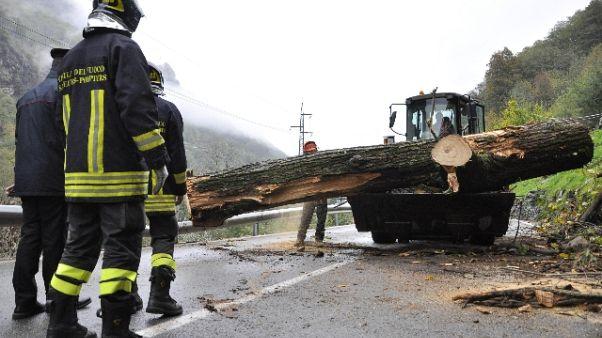 Albero su auto in VdA,vittime 2 torinesi