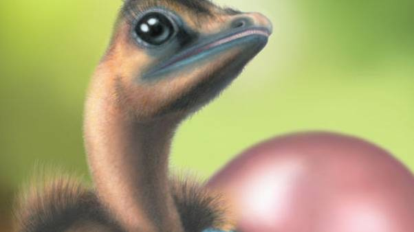 دراسة: بعض الديناصورات وضعت بيضا ملونا ومرقطا