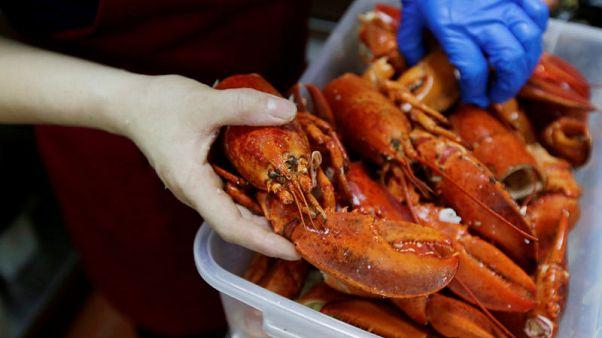 دراسة: أحماض أوميجا 3 في المأكولات البحرية ترتبط بصحة جيدة في الشيخوخة