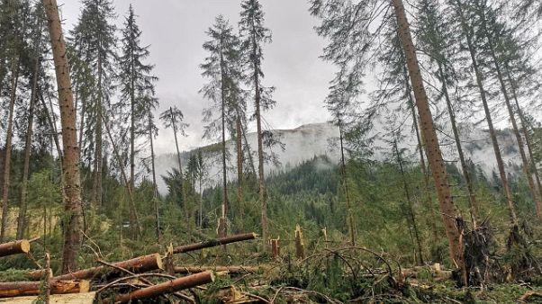 Maltempo: Veneto,500 mln danni nei campi