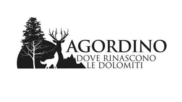 Maltempo: incontro e logo per Agordino