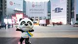 China's choreographed trade expo more 'theatre' than deal clincher