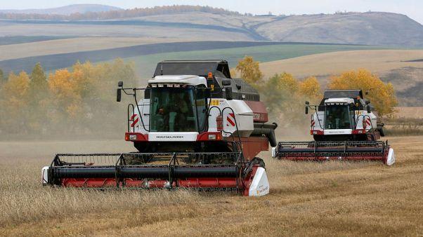 العراق يدرس استيراد القمح الروسي