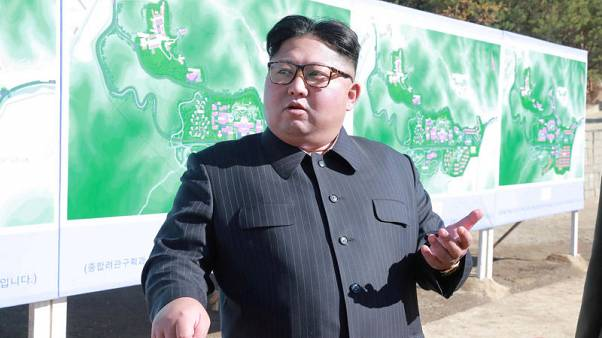 North Korea's Kim inspects testing of newly developed 'tactical' weapon - KCNA