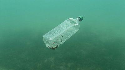 مخلفات البلاستيك في البحار تهدد وجبة السمك والبطاطس البريطانية الشهيرة