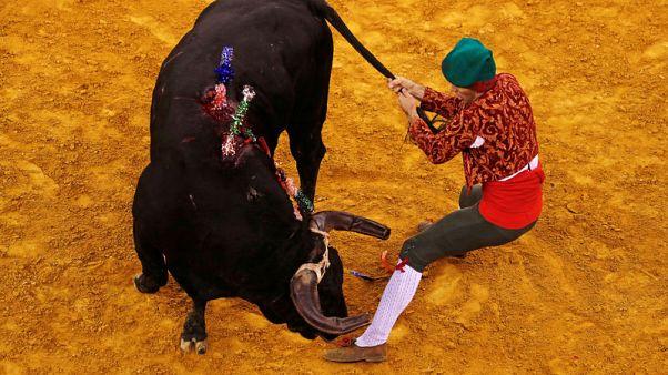 Bullfight tax row splits Portugal's ruling Socialists