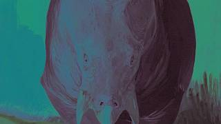 اكتشاف جديد: كائن بحجم الفيل عاصر الديناصورات