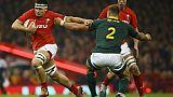 Rugby: la défense galloise croque des Springboks sans saveur