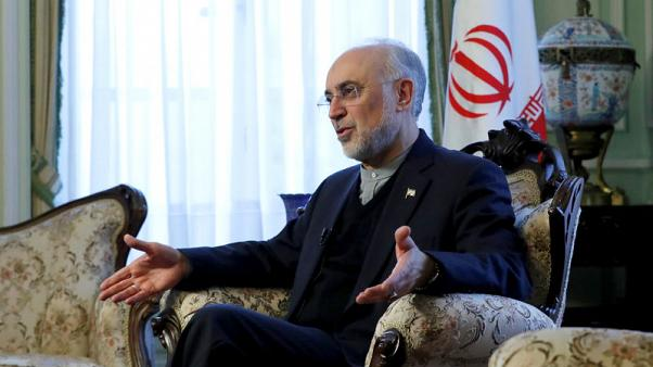 Iran's nuclear chief warns EU patience is running thin