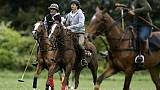 La génétique pour percer les secrets des meilleurs chevaux de polo du monde en Argentine