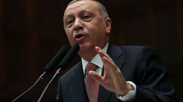 أردوغان يدعو إلى حل دبلوماسي للتوتر بين روسيا وأوكرانيا