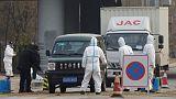 الصين تعلن عن بؤرة جديدة لإنفلونزا الخنازير الأفريقية