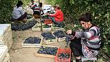 En Ouzbékistan, l'ouverture par le vin
