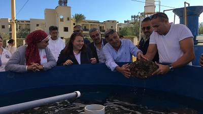 U.S. Supports Sustainable Tourism in Egypt's Red Sea Governorate