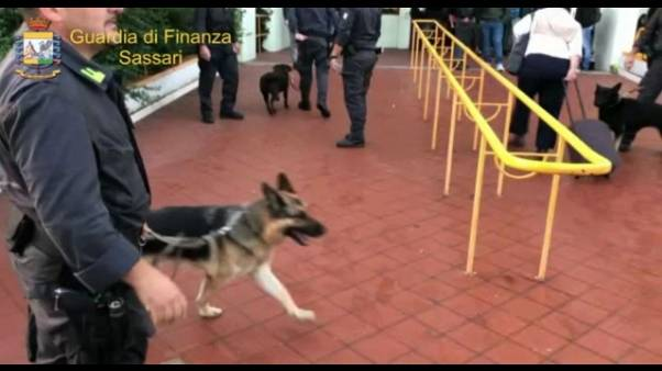 Cani antidroga a scuola,arresto genitori