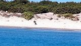 Spiaggia Capo Teulada aperta a tutti