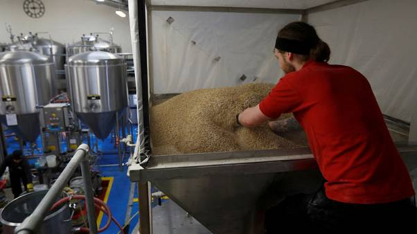 Hangover for UK farmers as Brexit uncertainty hits brewing barley sales to EU