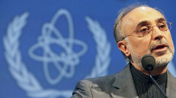صالحي: إيران يمكنها تخصيب اليورانيوم حتى 20% خلال 4 أيام