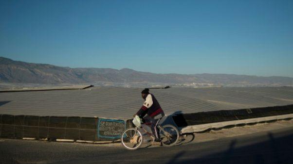 En Andalousie, des sans-papiers indispensables et indésirables