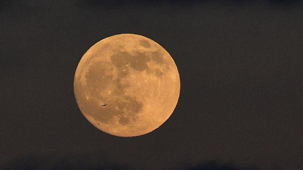 Bitter cold cancels some U.S. lunar eclipse festivities