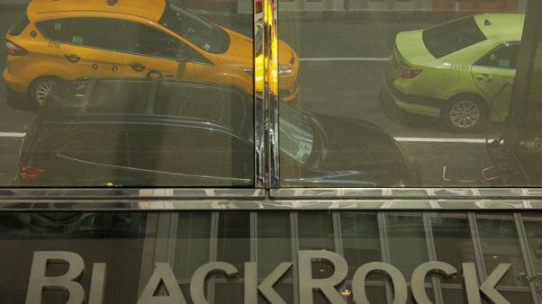 BlackRock plans environmentally conscious money market fund