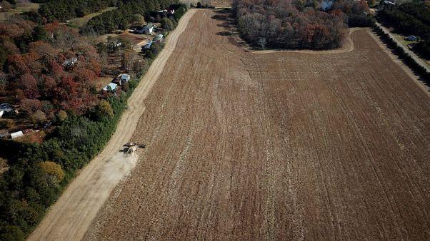 EU calms U.S. trade ties by accepting U.S. soybeans in biofuel