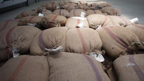 تجار: مصر تشتري 360 ألف طن من القمح للشحن في 11-20 مارس