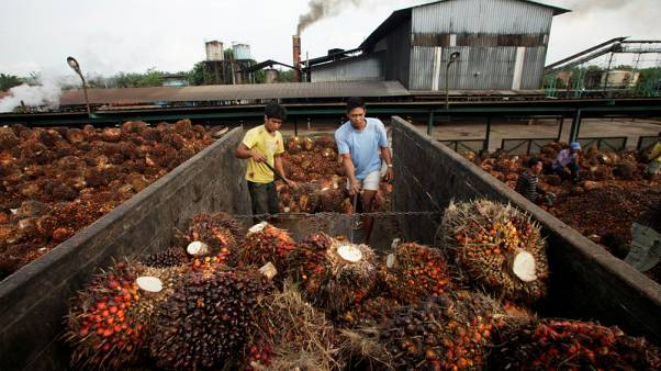 Indonesia to challenge 'discriminative' EU directive on palm oil