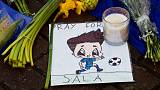 Private investigators find wreckage of missing soccer player Sala's aircraft