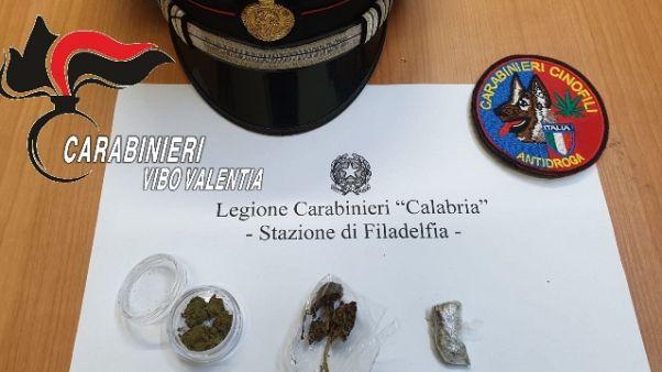 Cc trovano dosi marijuana in aula scuola