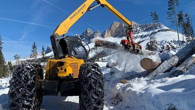 Neve frena lavoro nei boschi martoriati