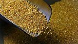 روسيا تقول إنتاجها من الذهب زاد إلى 314 طنا في 2018