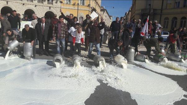 Latte, nuova protesta a Grosseto