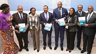 Des leaders du secteur privé africain prennent l'initiative de transformer les soins de santé en Afrique, avec l'appui de chefs d'État africains