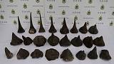 Hong Kong snares record haul of rhino horns from South Africa