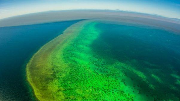 Inondations en Australie: les sédiments menacent la Grande barrière