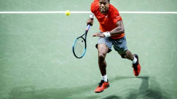 Tennis: Monfils prend sa revanche et file en finale à Rotterdam