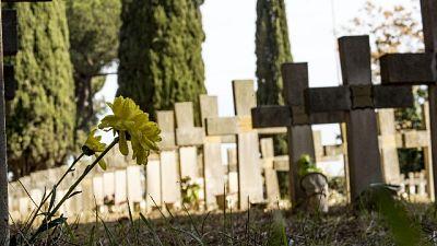 Fido e padrone in stessa tomba, ok legge