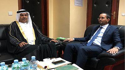 UAE Ambassador, Mauritanian Minister discuss cooperation