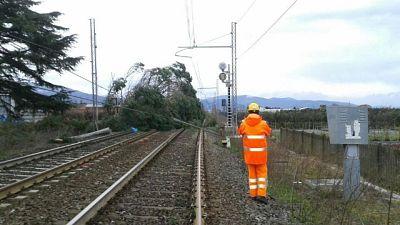 Rogo sui binari, treni in ritardo 13 ore