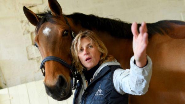 Equitation: à Château Bacon, la vente de chevaux de sport bat son plein