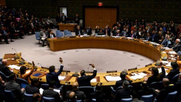 Vote au Conseil de sécurité de l'ONU, le 28 février 2019 à New York