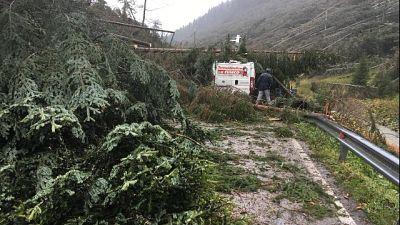 Maltempo: in Trentino 85.600.000 euro