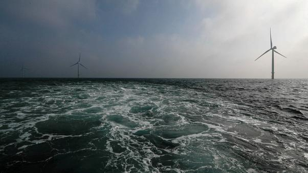 Shell and Eneco team up in bid for Dutch offshore wind farms