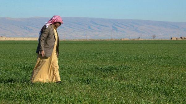 Irak: après l'EI, la vengeance et la peur dans le nord multiethnique