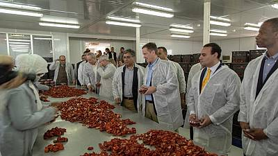 USAID Administrator Kicks Off Farm Productivity Project in Upper Egypt