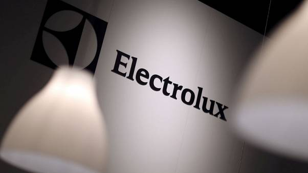 Electrolux looks to U.S. to boost professional products sales