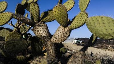 Auto:Mondiale Wrc2 ad Adinolfi-Scattolin