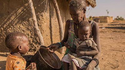 Rapport mondial sur les crises alimentaires: plus de 100 millions de personnes dans le monde souffrent encore de faim aigüe